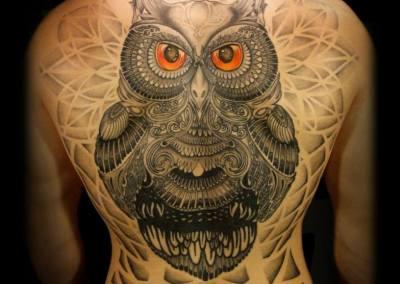 owldot